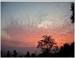 冬日夕陽美景如畫 苗栗卓蘭507高地美健農場